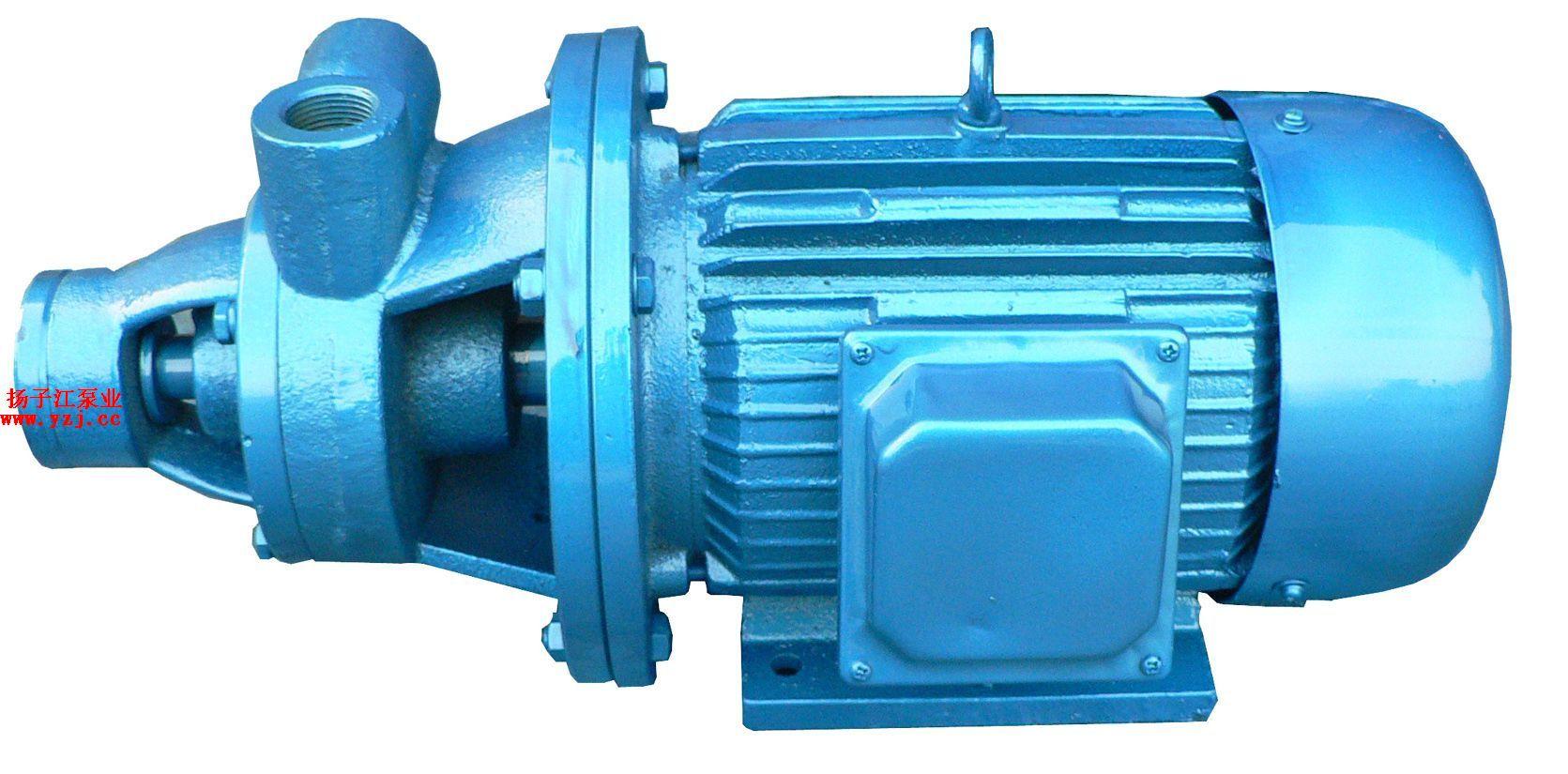 漩涡泵:1W型单级漩涡泵