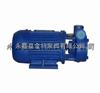 1W2.5-2.4旋涡泵